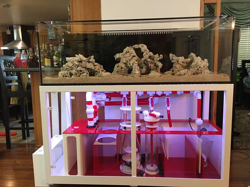 Aquarium tank system1.jpg