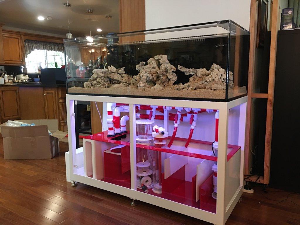 Aquarium tank system2.jpg