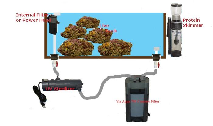 Bir akvaryum ekipmanı nasıl seçilir