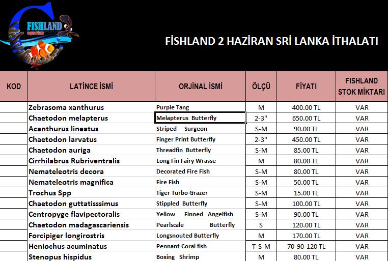 fishland sri lanka 1.png
