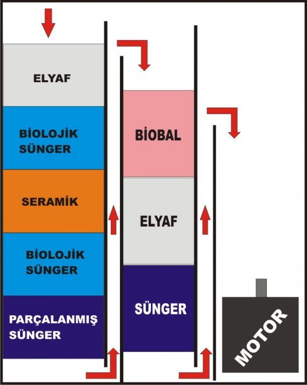 Graphic1.jpg