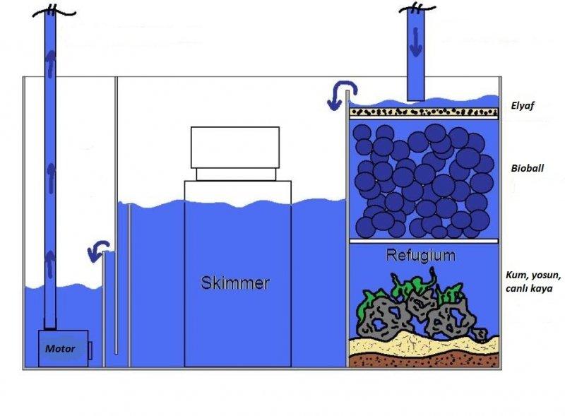 sump sistem deniz akvaryumu.jpg