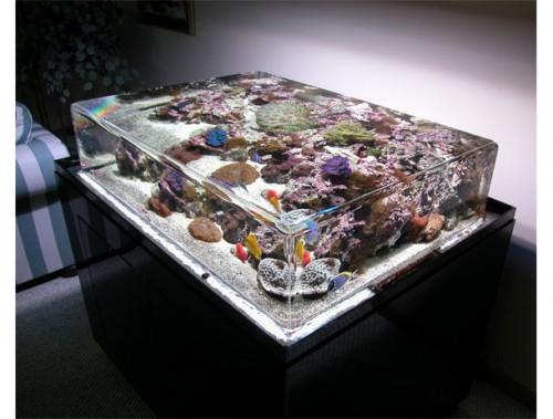zero-edge-aquarium-500x379.jpg