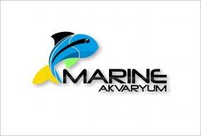 MARINE AKVARYUM